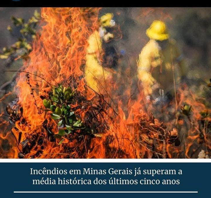 Incêndios Florestais em Minas Gerais superam média histórica